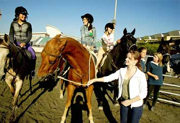saddleclueaster.jpg